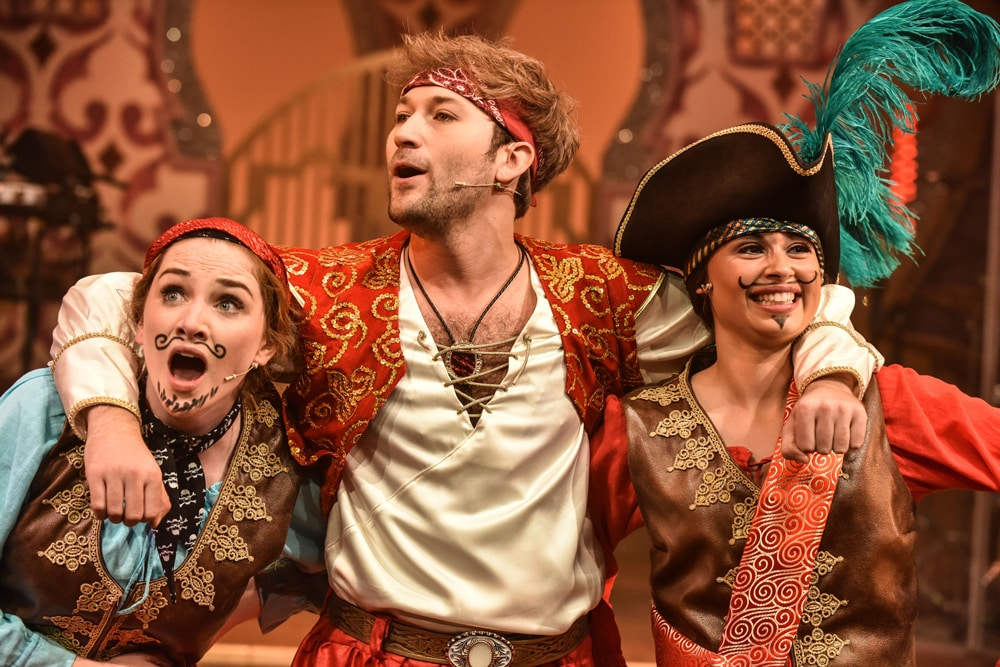 Book now for Sinbad The Rock 'N' Roll Panto at New Wolsey Theatre