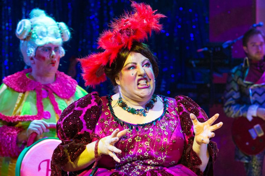 Cinderella The Rock N Roll Panto New Wolsey Theatre