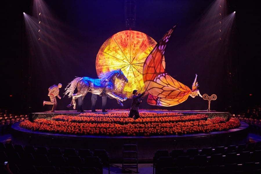 REVIEW: Cirque Du Soleil Luzia, Royal Albert Hall ✭✭✭✭✭